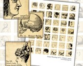 Antique Victorian Phrenology Science digital collage sheet 1x1 inch square 25.4mm square 25mm x 25mm fortune telling quack medicine