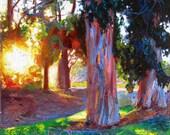 "Original Oil Painting, Landscape, Sunrise, Sunset, Trees, Impressionism, Large...16 x 20"""