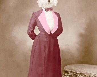 Annie, large original photograph of a Bichon Frise-Maltese mix wearing a vintage Victorian dress