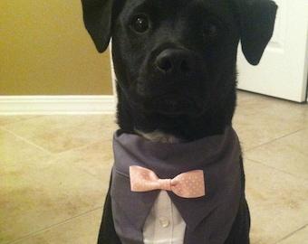 Gray Bandana Suit Wedding Party Sz XS S M