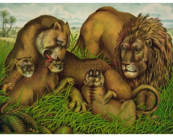 antique victorian lion family lithograph digital download