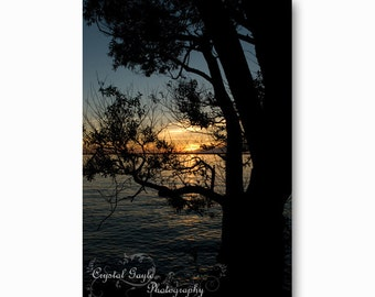 Lake House Decor, Sunset Photography, Blue Skies, Black Silhouette, Gift for Woman, Girlfriend Present, Cottage Resort Wall Decoration