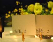 Editable Wedding Place Cards - Tables 1 to 12 - Instant download