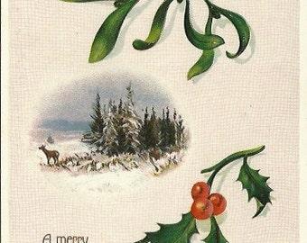 "Antique Postcard ""A Merry Christmas to you"" A Beautiful Woodland Scene - Mistletoe & Holly 1908"