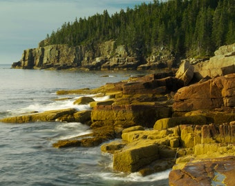 Landscape Photograph Otter Cliff in Acadia National Park Maine Nature Photography Rocky Coast Ocean Water Art Print Earth Tone Home Decor
