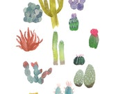cactus print . cacti party // cactus and succulent watercolor illustration