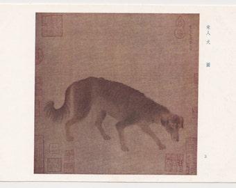 Vintage  (Dog) Postcard- 1970s