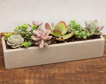 Unique concrete planter related items Etsy