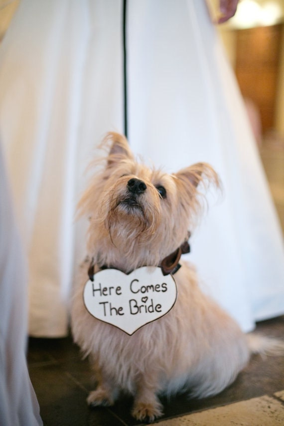 Puppy Sign Flower Girl Basket Alternative  Here Comes The Bride Heart