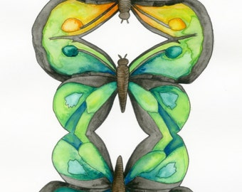 Butterflies Art Print: 8x10