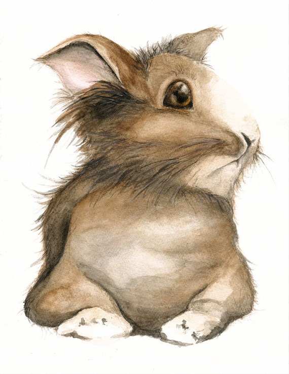 Brown Bunny Note Cards, Nature Art from Original Painting