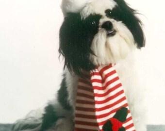 Pet Santa Hat and  Scarf Costume; Dog, Cat