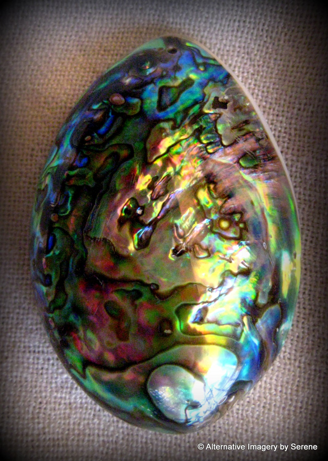 Lush Abalone Shell Bead Iridescent Blue Green Gold Silver