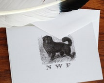 Newfoundland Dog Stationery Set of 10 - 300 Newfie Stationery, 100% Cotton Savoy, Monogrammed Stationery, Thank You Note Card