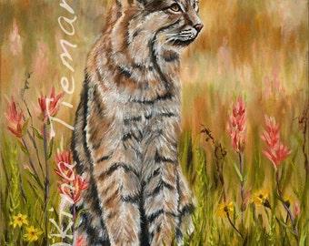11X14 Spring Bobcat, Reproduction