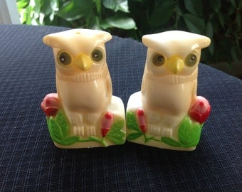 Vintage Pair of Owl and Roses Plastic Salt and Pepper Shakers Made in Hong Kong
