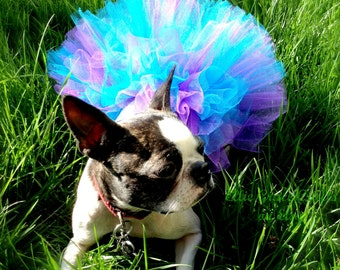 Doggie Tutu:  TURQUOISE BLUE & PURPLE   Small / Medium / Large Dog Tutu