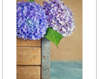 Hydrangea Crate - Any and All Occasions