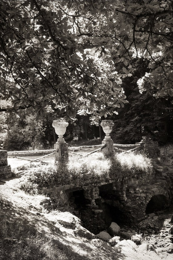 Landscape art print Trees Black and white nature photography