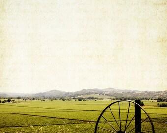Fine Art Photograph-Alexander Valley-California-Vineyard View - Rustic - Wall Art - Rural