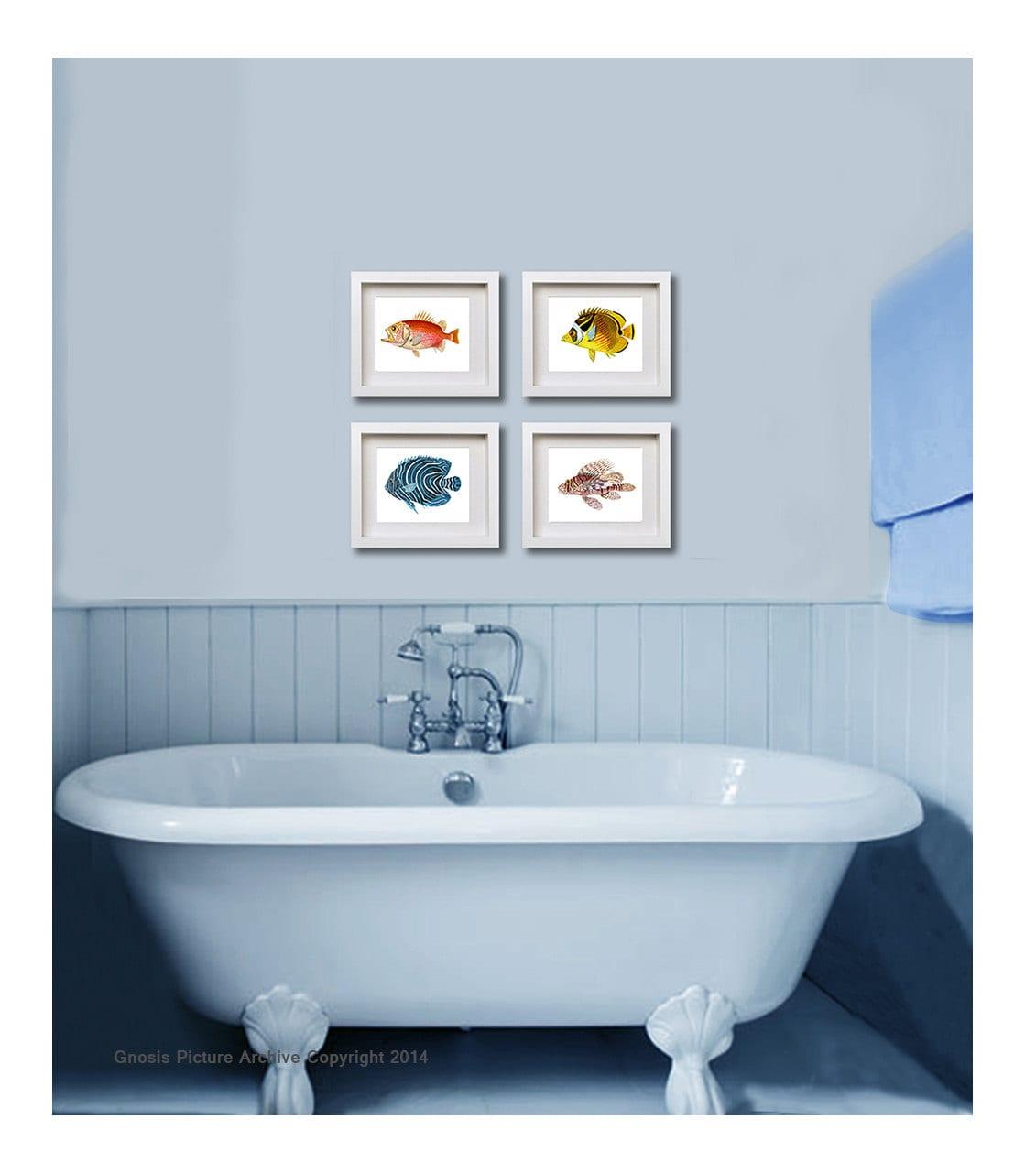 Tropical Bathroom Wall Decor: Antique Fish Art Prints Set Of 4 Tropical Fish 8x10 Boy