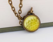 Honeycomb Natural History Small Pendant Necklace Honey Bee Yellow Gold