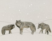 Winter Wolves print
