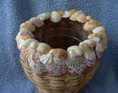 Sea Shell Basket - Handwoven with Sanibel Island Shells