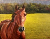 Original Oil Painting Horse at Cades Cove Meadow Great Smoky Mountains National Park Tennessee FREE SHIPPING