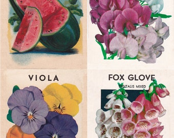 vintage seed packets, 28 different printable digital images