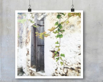 Greek Travel Photography: Old wooden shutters with green vine and white wall house Crete - 7x7 12x12 18x18  square Fine Art Photo Print