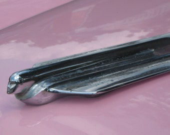 Photograph pink cadillac with silver hood ornament photograph antique automobile car auto