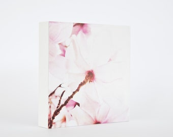 Under the Magnolia - photo block, magnolia photograph, flower photo, pale pink blossoms, pink flower photography, spring, floral decor