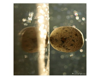 Stone Photograph Floating Stone Natural History Photograph Rock Bokeh Earth Speckled Stone Light