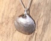 Fine Silver Seashell Necklace