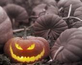 Melting Pumpkin Jack-O-Lanterns-Whipped Sugar Scrub