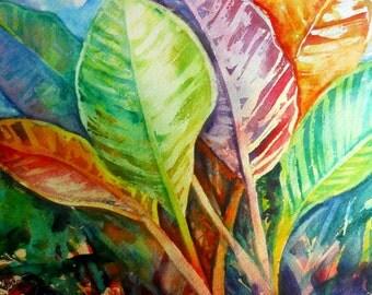 Tropical Leaves 8x10 print from Kauai Hawaii green purple orange blue