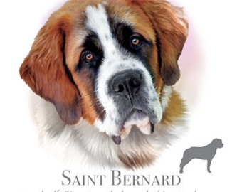 "SAINT BERNARD dog fabric with Phrase  on One 18 x 22 inch Fabric Panel for Sewing. Actual picture is of 10""x10 1/2"" on white background."