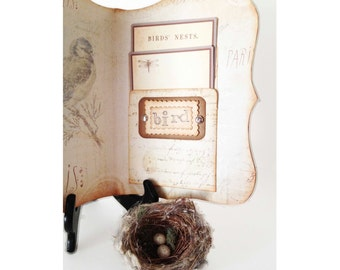 Nature Bird Journal, Bird Watcher Diary, Travel Nature Nest Log, Bird Eggs, Personal Travel Log, Record Bird Activity Journal
