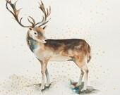 Printable Reindeer download