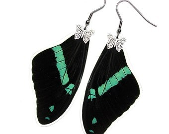 Real Butterfly Wing Earrings (Nireus Forewing - E083)