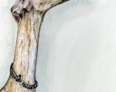 Greyhound Art Dog Print - Lurcher