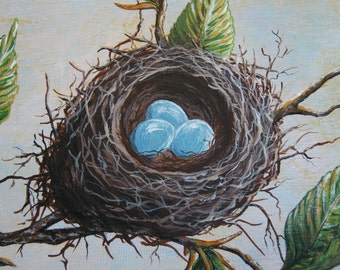 Spring Robin Nest - American Beech Tree - Spring Nest Painting - 8  X 10 Original Acrylic on Artists Panel