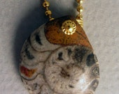 Fossil Ammonite in Brass Pendant Necklace OOAK