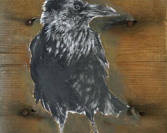 The crow - original graphite drawing on barn wood