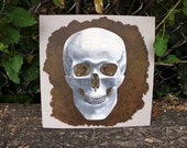 Science Art, Human Skull Art, Anatomy Art, Gift for Doctor, Realistic Painting, Anatomical, Medical Illustration, 10x10, Acrylic Painting