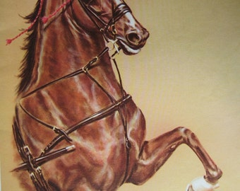 Large Vintage Color Print of a pretty Horse
