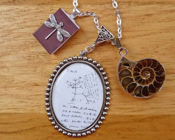 Darwin Tree of Life Science Jewelry Ammonite Fossil Necklace for Your Evolving Style Drawing from His Journal Biology Paleontology Nerd Ware