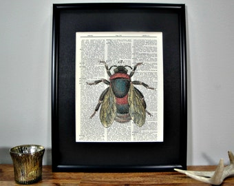 FRAMED Vintage Dictionary Print - Woodland Series - Bee Specimen