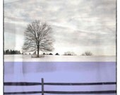 Winter photography, Tree Decor, Landscape Print, Wall Decor, Wall Hanging, Wall art, Lavender Print